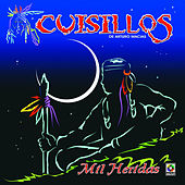 Mil Heridas by Banda Cuisillos