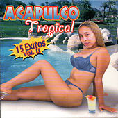15 Exitos, Vol. 2 by Acapulco Tropical