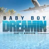 Dreamin (feat. Roseleeo) by Baby Boy