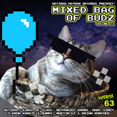 Mixed Bag of Budz, Vol. 1 by Various Artists