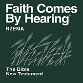 Nzema New Testament (Non-Dramatized) by The Bible