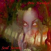 Soul Secrets by Pete Hawkes