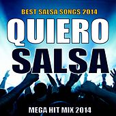 Quiero Salsa 2014 - Mega Hit Mix (Best Salsa Songs 2014) by Various Artists