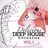 Delicious Deep House Collection, Vol. 1 by Various Artists
