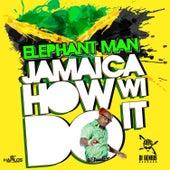 Jamaica How Wi Do It - Single by Elephant Man