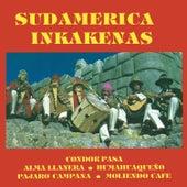 Sudamerica by Inka Kenas