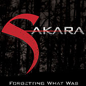 Forgetting What Was by Sakara