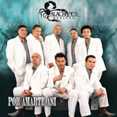 Por Amarte Así by Alacranes Musical