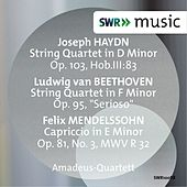 Beethoven, Haydn & Felix Mendelssohn: Works for String Quartet by Amadeus Quartet