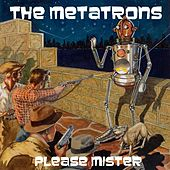 Please Mister by The Metatrons