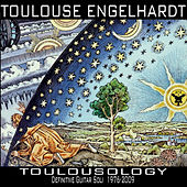 Toulousology by Toulouse Engelhardt