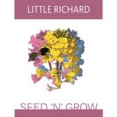 Seed 'N' Grow von Little Richard