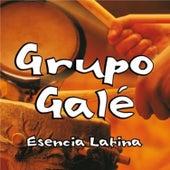 Esencia Latina by Grupo Gale