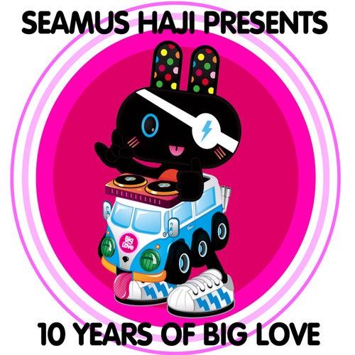 Seamus Haji Presents 10 Years of Big Love by Various Artists