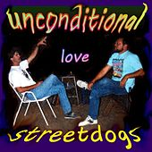 Unconditional Love (feat. Robert Keislar) by Street Dogs
