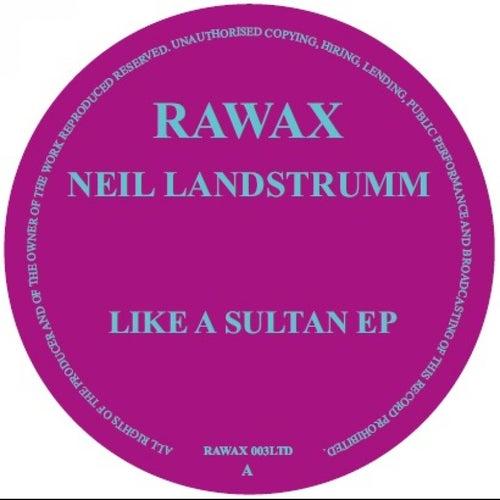 Like a Sultan by Neil Landstrumm