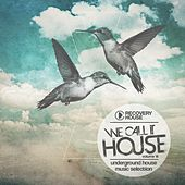 We Call It House, Vol. 14 by Various Artists