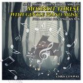 Música para el Sueño: Bosque a Medianoche Con Música Relajante de Piano by Chris Conway