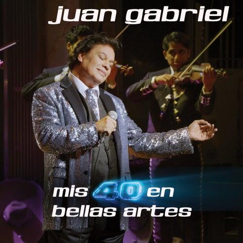 Mis 40 En Bellas Artes by Juan Gabriel