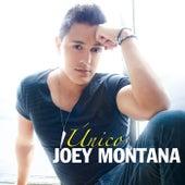 Único by Joey Montana