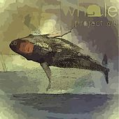 Project #1 (Spontaneous) by Whale
