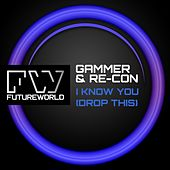 I Know You (Drop This) by Gammer