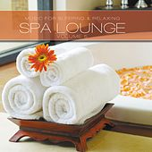 SPA Lounge, Vol. 5 by Various Artists