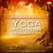 Kundalini: Yoga, Meditation, Relaxation by Kundalini: Yoga, Meditation, Relaxation