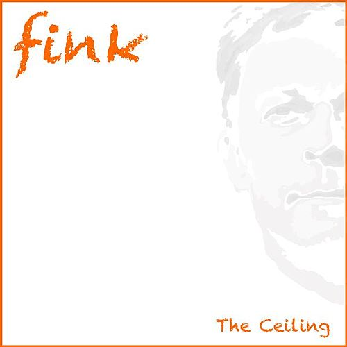 The Ceiling by Fink (UK)