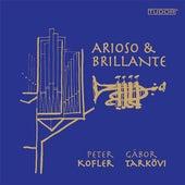 Arioso & Brillante by Gábor Tarkövi