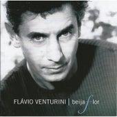 Beija Flor by Flavio Venturini