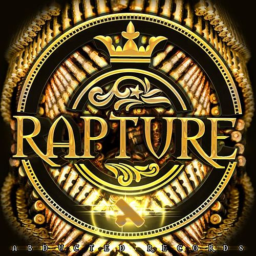 Large Guns by The Rapture