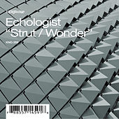 Strut / Wonder by Echologist
