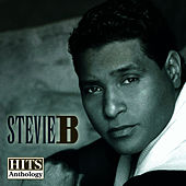 Hits Anthology by Stevie B