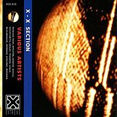 X-X Section by Various Artists
