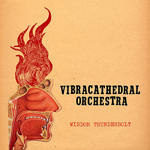 Wisdom Thunderbolt by Vibracathedral Orchestra
