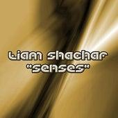 Senses by Liam Shachar