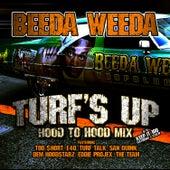 Turf's Up (Hood To Hood Remix) by Beeda Weeda
