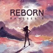 Reborn by Rameses B