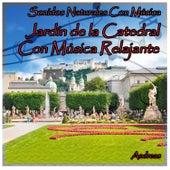 Sonidos Naturales Con Música: Jardín de la Catedral Con Música Relajante by Andreas