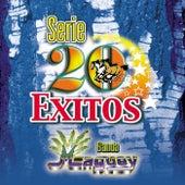 Serie 20 Exitos by Banda Maguey