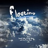 Floating by Young Gully