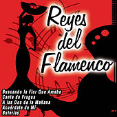 Reyes del Flamenco by Various Artists