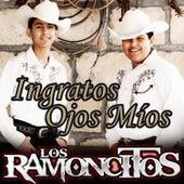 Ingratos Ojos Míos by Los Ramoncitos