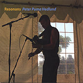 Resonans by Peter Puma Hedlund