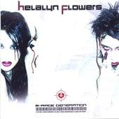 E-Race Generation by Helalyn Flowers