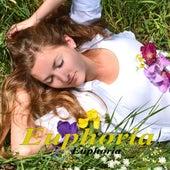 Euphoria by Euphoria