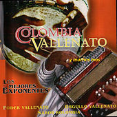Colombia Vallenato by Various Artists