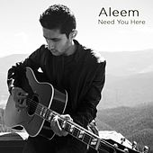 Need You Here by Aleem Featuring Leroy Burgess