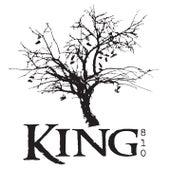 Proem by King 810